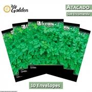 10 Envelopes - Sementes de Cerefólio Samir - Atacado - Feltrin - Linha Golden