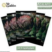 10 Envelopes - Sementes de Chicória La Spezia - Atacado - Feltrin - Linha Golden
