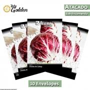 10 Envelopes - Sementes de Chicória Palla Rossa (Radicchio) - Atacado - Feltrin - Linha Golden