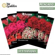 10  Envelopes - Sementes de Cravina Barbatus Sortida - Atacado - Feltrin - Linha Golden