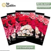 10 Envelopes - Sementes de Cravina Da China Singela Sortida - Atacado - Feltrin - Linha Golden