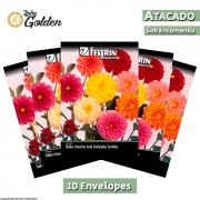 10 Envelopes - Sementes de Dália Unwins Anã Dobrada Sortida - Atacado - Feltrin - Linha Golden