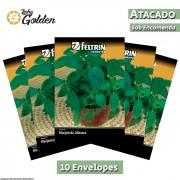 10 Envelopes - Sementes de Manjericão Alfavaca Verde - Atacado - Feltrin - Linha Golden