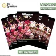 10 Envelopes - Sementes de Mosquitinho Sortido - Atacado - Feltrin - Linha Golden