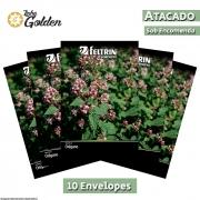 10 Envelopes - Sementes de Orégano Haniel - Atacado - Feltrin - Linha Golden