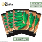 10 Envelopes - Sementes de Pepino Pioneiro - Atacado - Feltrin - Linha Golden