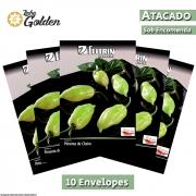 10 Envelopes - Sementes de Pimenta de Cheiro Lupita - Atacado - Feltrin - Linha Golden