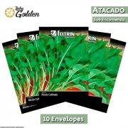 10 Envelopes - Sementes de Rúcula Cultivada - Atacado - Feltrin - Linha Golden
