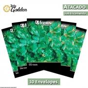 10 Envelopes - Sementes de Salsa Graúda Portuguesa - Atacado - Feltrin - Linha Golden