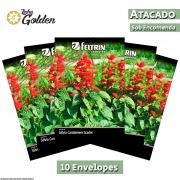 10 Envelopes - Sementes de Salvia Carabiniere Scarlet - Atacado - Feltrin - Linha Golden