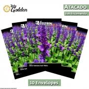 10 Envelopes - Sementes de Sálvia Farinhenta Farinácea Azul Vitória ou Sálvia Farinácea - Atacado - Feltrin - Linha Golden