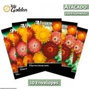10 Envelopes - Sementes de Sempre-Viva Dobrada Sortida - Atacado - Feltrin - Linha Golden