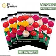 10 Envelopes - Sementes de Zinnia Lil. Pom-Pom D. Sortida - Atacado - Feltrin - Linha Golden