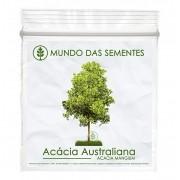 Brindes Ecológicos com Sementes de Acacia Mangium Australiana - Mundo das Sementes