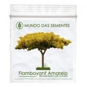 Brindes Ecológicos com Sementes de Flamboyant Amarelo - Delonix regia var. Flavida – Mundo das Sementes