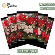 10 Envelopes - Sementes de Verbena Sortida - Atacado - Feltrin - Linha Golden