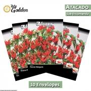 10 Envelopes - Sementes de Pimenta Vulcão - Atacado - Feltrin - Linha Golden
