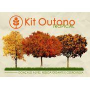 Kit Outono Tropical - 150 Sementes - Gonçalo, Resedá Gigante, Cedro Rosa - Mundo das Sementes