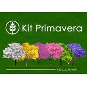 Kit Primavera - 300 Sementes - Mundo das Sementes