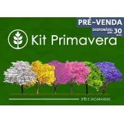 Pré Venda - Kit Primavera - 60 Sementes - Mundo das Sementes