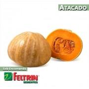 Sementes de Abóbora Maranhão - Atacado - Feltrin