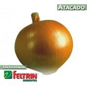 Sementes de Cebola Crioula Conesul - Atacado - Feltrin