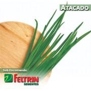 Sementes de Cebolinha Todo Ano Evergreen Nebuka - Atacado - Feltrin