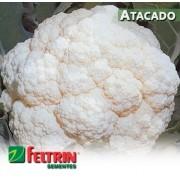 Sementes de Couve-Flor Piracicaba Precoce Sf 59 - Atacado - Feltrin