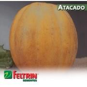 Sementes de Melão Gaúcho Conesul - Atacado - Feltrin