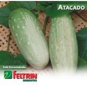 Sementes de Pepino Esmeralda Tipo Caipira - Atacado -  Feltrin