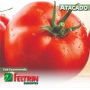 Sementes de Tomate Afonso - Atacado - Feltrin