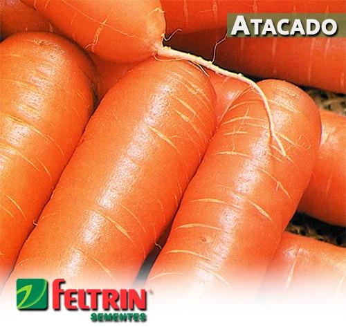 Sementes de Cenoura Nantes Milena - Atacado - Feltrin