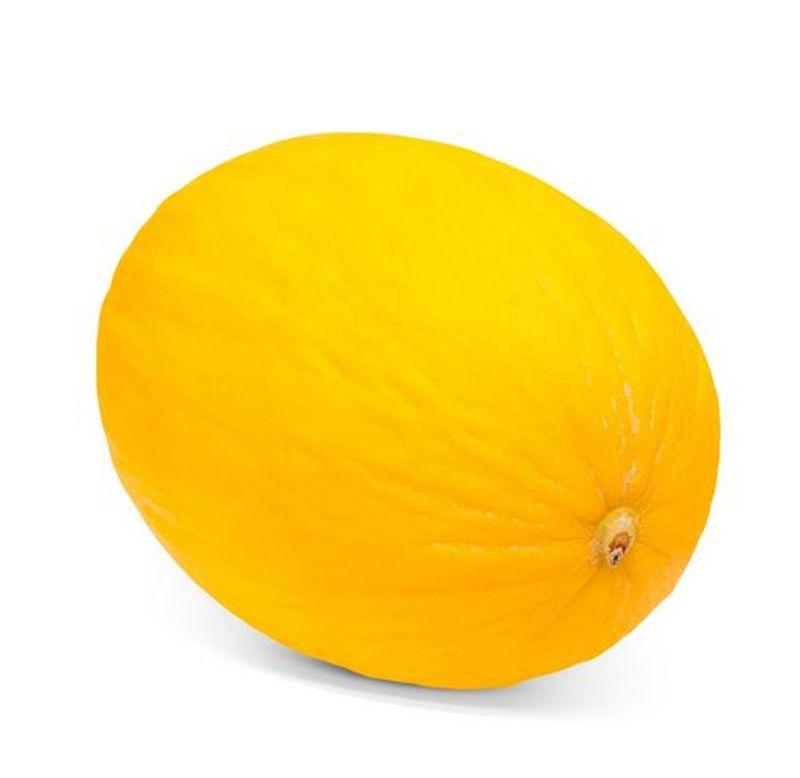 Sementes de Melão Amarelo - Feltrin