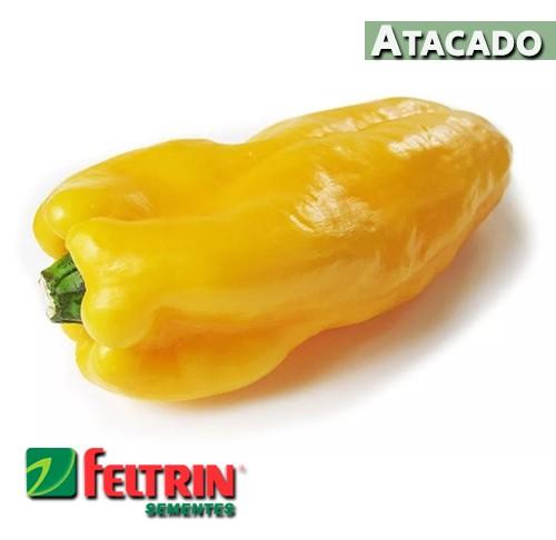 Sementes de Pimentão Amarelo SF - Atacado - Feltrin