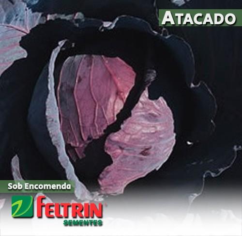 Sementes de Repolho Takami Roxo Híbrido - Atacado - Feltrin
