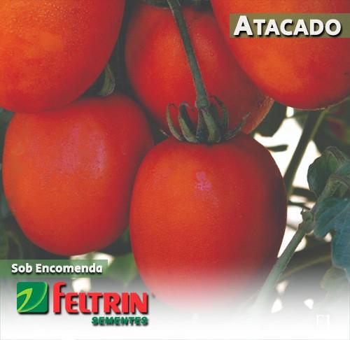 Sementes de Tomate Adriel - Atacado - Feltrin