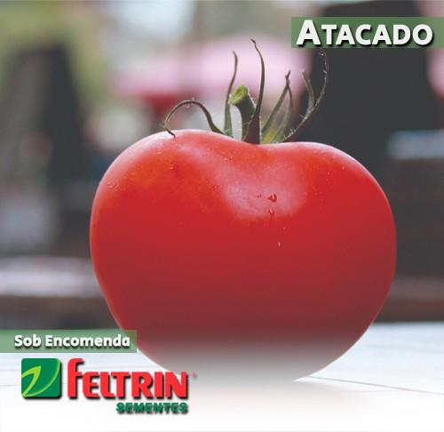 Sementes de Tomate Tainara - Atacado - Feltrin