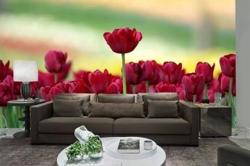 Papel De Parede 3D | Flores 0021 - papel de parede de flores