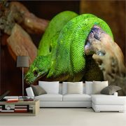 Papel De Parede para Sala | Animais 3D 0010 - Sobmedida: m²