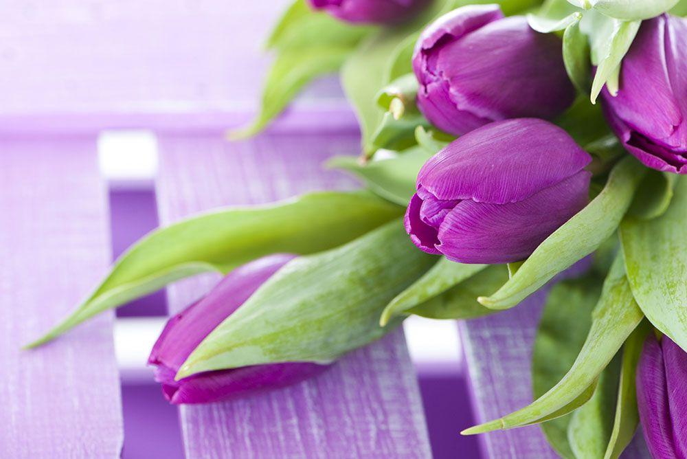 Papel De Parede 3D | Flores 0013 - papel de parede de flores  - Paredes Decoradas