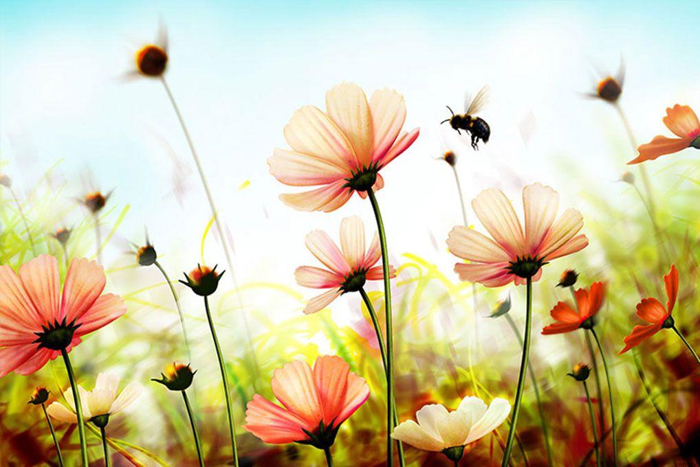 Papel De Parede 3D | Flores 0027 - papel de parede flores  - Paredes Decoradas