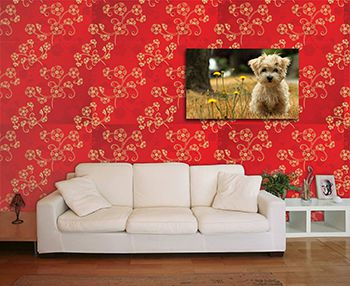 Papel de Parede Floral 0057 - Adesivos de Parede