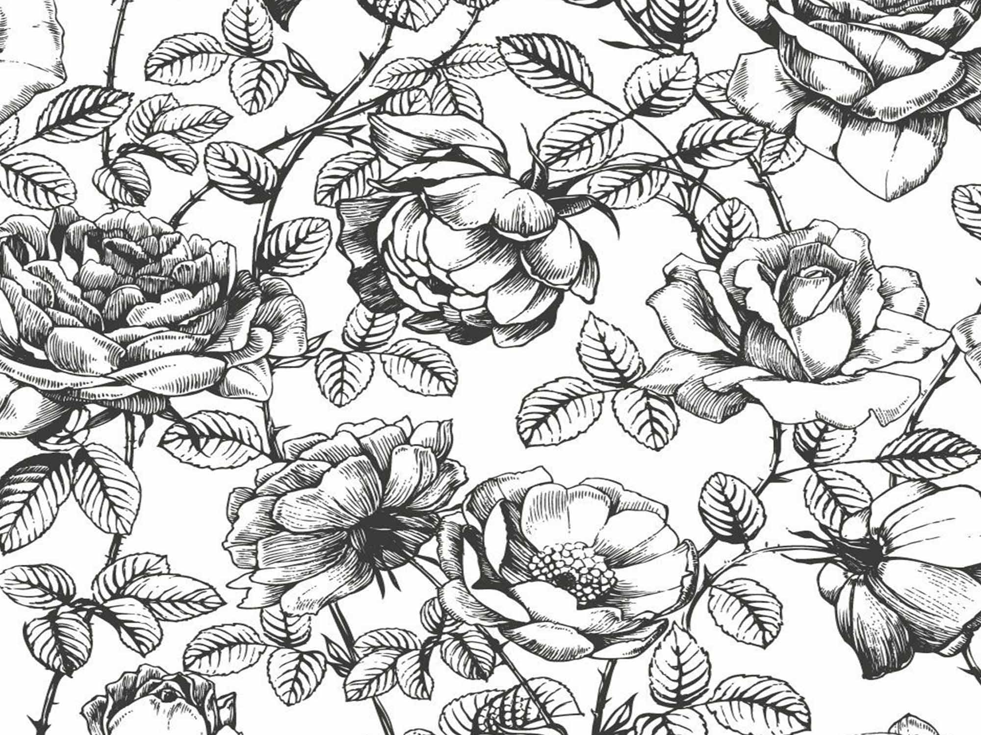 Papel de Parede Floral 0112 - Adesivos de Parede  - Paredes Decoradas