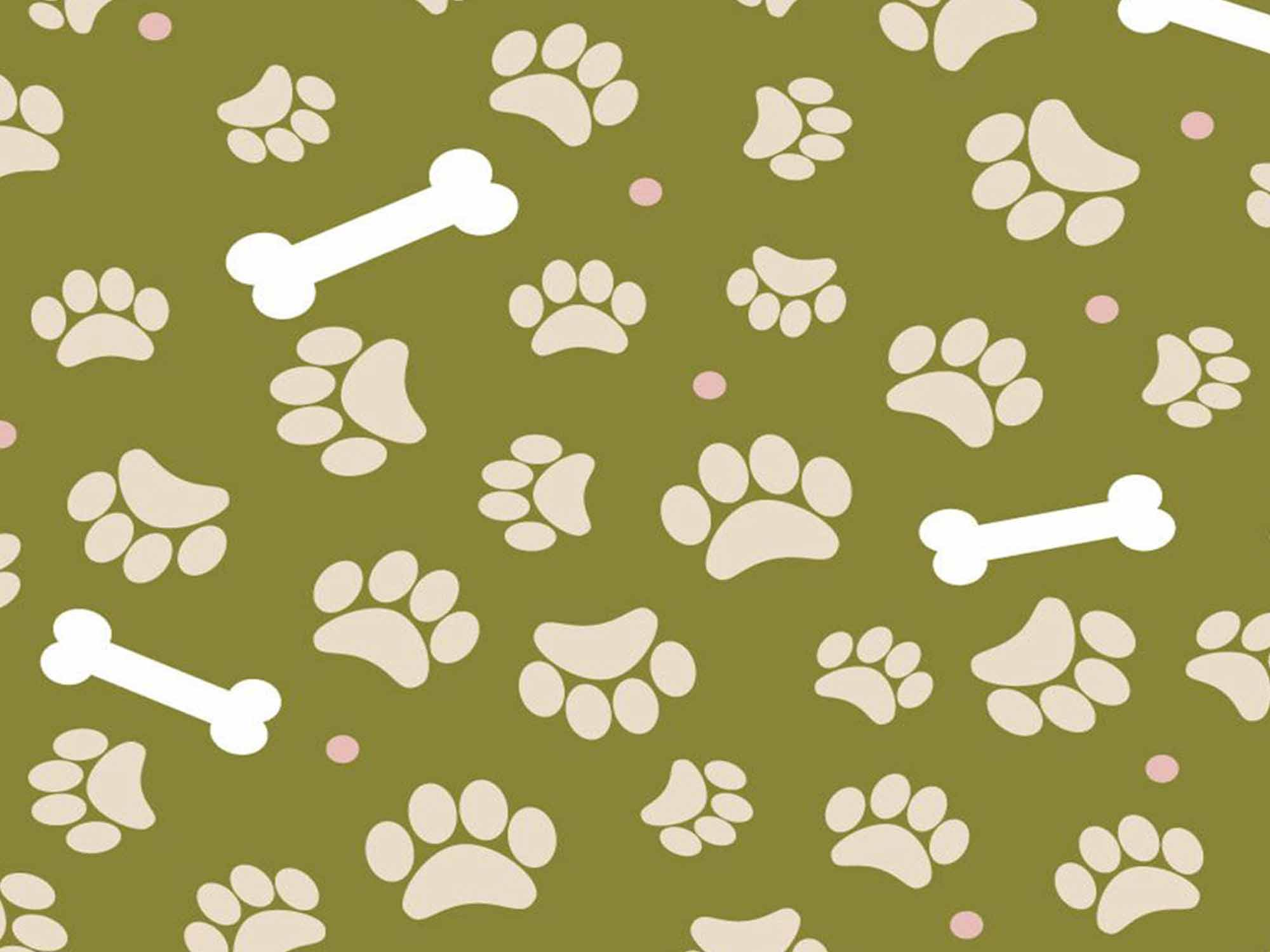 Papel de Parede para Quarto Animais 0011 - Adesivos de Parede  - Paredes Decoradas