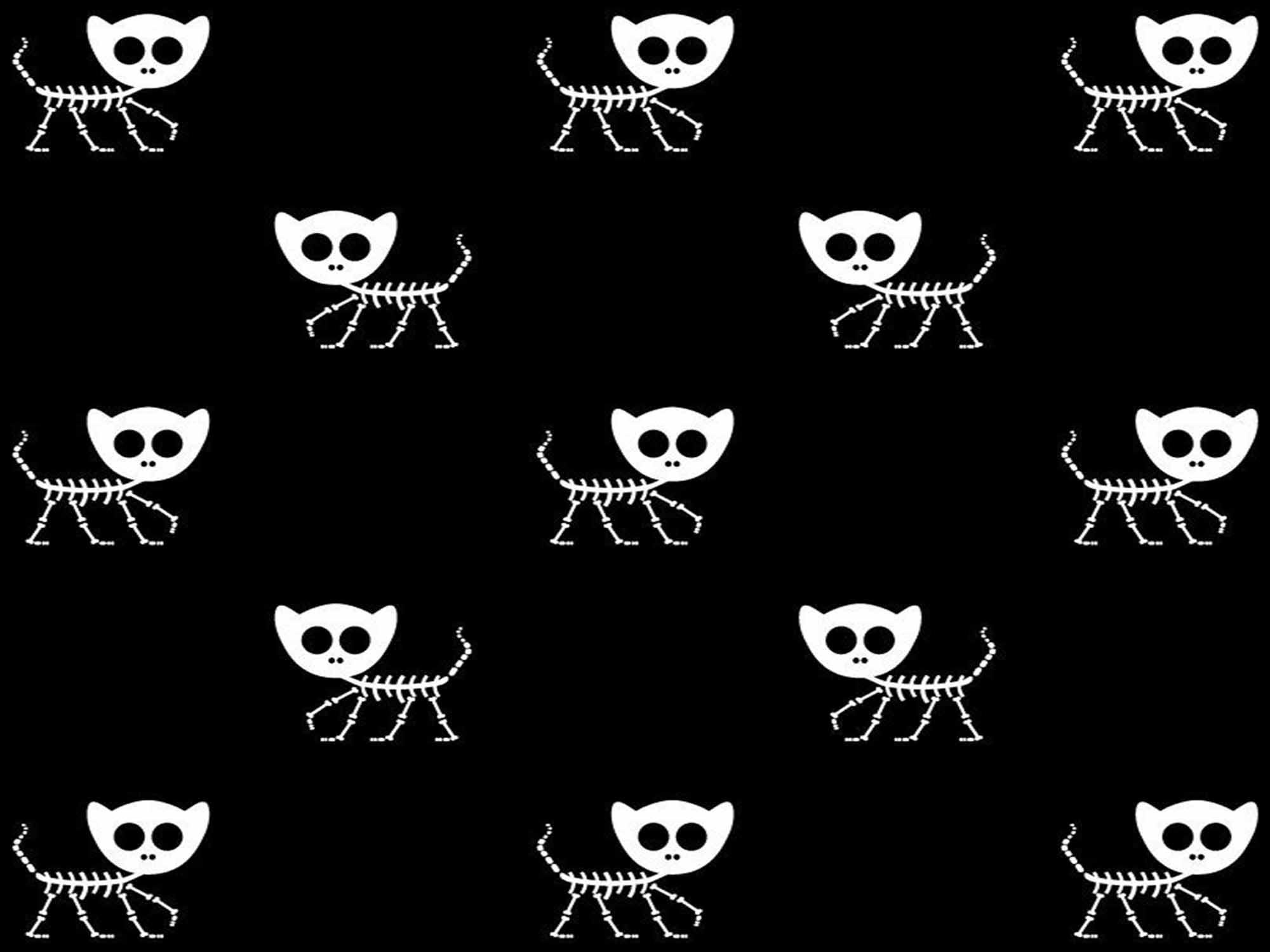 Papel de Parede para Quarto Animais 0029 - Adesivos de Parede  - Paredes Decoradas