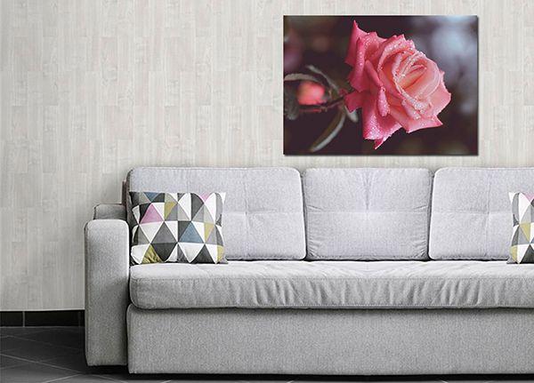 Quadro Decorativo Paisagens 0033