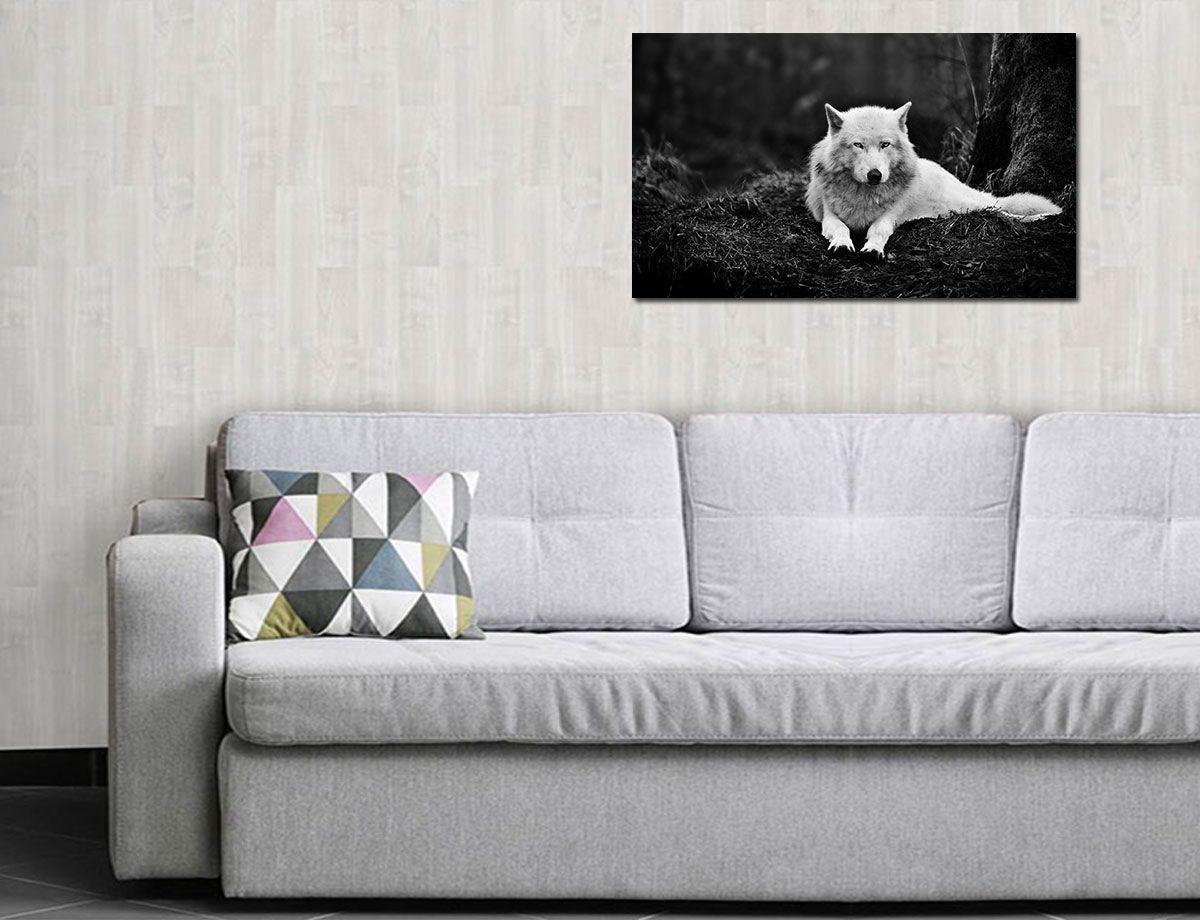 Quadro Decorativos de Animais 0004