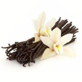 Fava De Baunilha Bourbon Vanilla Patissere Confeitaria 12cm