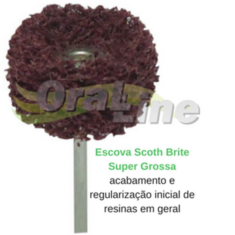 ESCOVA SCOTH BRITE VERMELHA GROSSA - PM