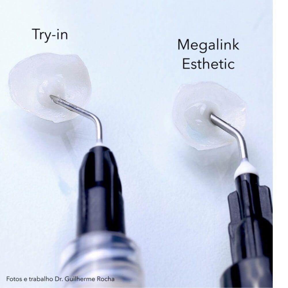 TRY-IN (Pasta Teste) Cimento Megalink Esthetic